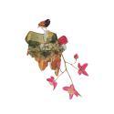 Bird on Rock Print image