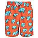 Elephant Swim Shorts image