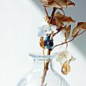 Real Flower In The Dawn Hydrangea & Crystal Drop Earrings image