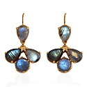 Coachella Labradorite Drop Earrings image