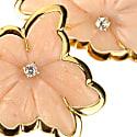 Orchidè Rose image