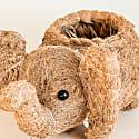 Coco Coir Animal Planter - Elephant image