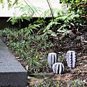 Cactus Set - Volcanic Stone image