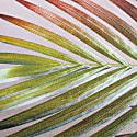 Cream & Gold Tropical Palm Leaf Rectangular Cushion image