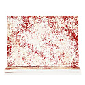 Speck Notebook - Blush/Red image