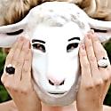 Sonia Sheep White Ring image