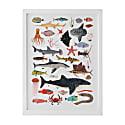 Sea Life Print image