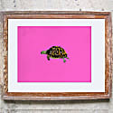 The Little Tortoise Limited Edition Signed Print image