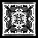 The Joker & Jackdaw Scarf Limited Edition image