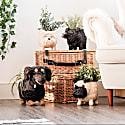 Coco Coir Animal Planter - Westie image
