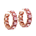 Captivating Ruby Pink Hoops image
