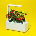 Smart Garden 3 - White image