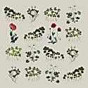 Poppies Oversize Coat image