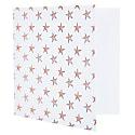 Star Fish Notecard image