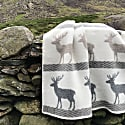 Deer Wool Blanket image