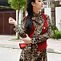 Petra Animal Print Asymmetric Midi Dress image