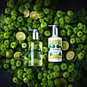 Malavara Lime Vetiver Body & Hand Wash image