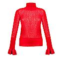 Red Knit Turtleneck image
