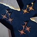Large Star Burst Drop Earring Rosegold image