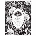 Elemental Jellyfish Print Black & White image