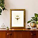 'Honey Queen Bee' - Fine Art Print A5 Colour image