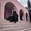 Diane Silk Dress image