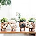 Poodle Planter - Coco Coir Pots Likhâ image