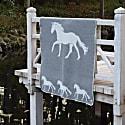 Horse Blanket image