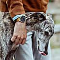Moderno Vegan Suede Watch Gold, Black & Camel image