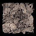 Sleeping Dogs Art Print Black image