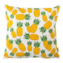 Piña Cushion image