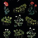 Black Poppies Short Coat image
