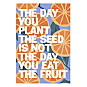 Eat The Fruit Art Print - A4 image