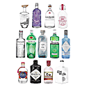 Gin Collection, 2021 image