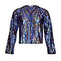 Blue & Gold Sequin Top With Long Sleeves image