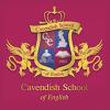 logo Cavendish Malta