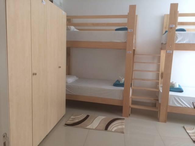 homestay shared bedroom linguatime