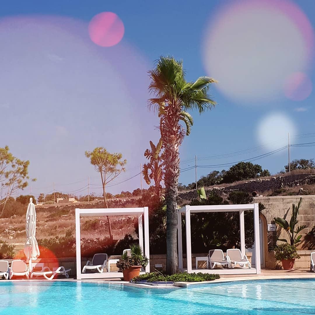 salini resort malta pool