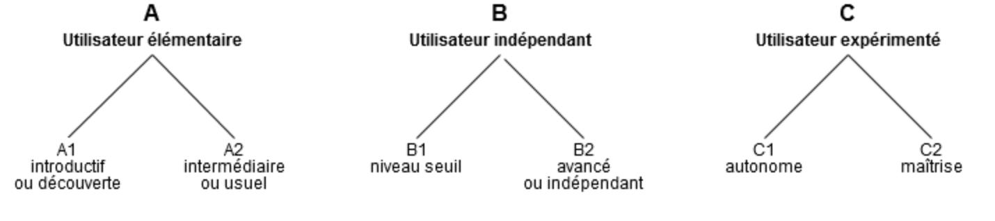 cecrl schema niveau language