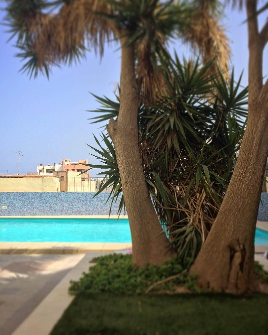 the residence saint julians swiming pool