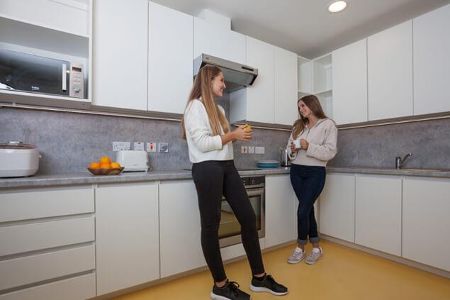 dorset residence dublin kitchen