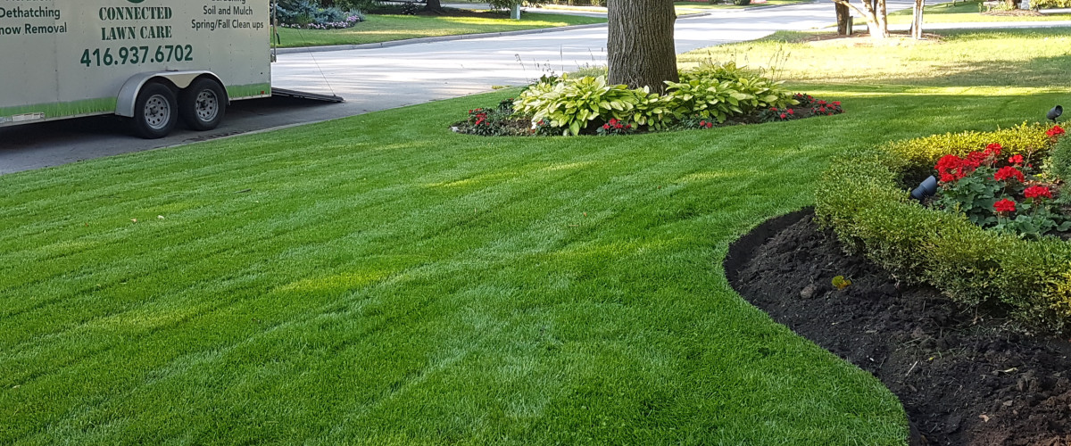 Connected Lawn Care