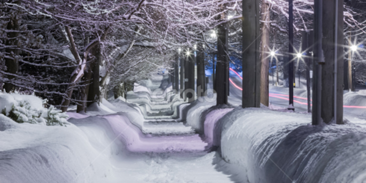 SNOW SUPPLIES
