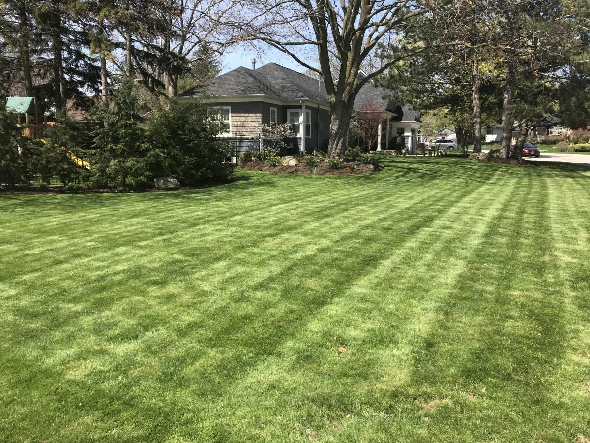 Keywest Landscaping & Maintenance