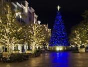 Truck Wrap Lighting & Artificial Christmas Tree