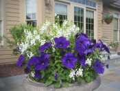 Patio Urns