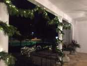 Fresh Greens Garland Lighted