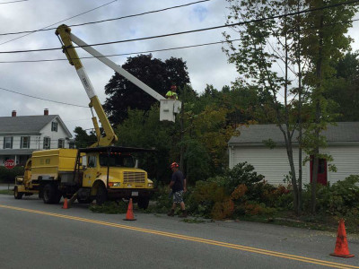 During - Tree work, new lawn, walkway, stump removal, grading, new fence, irrigation system and hydroseeding (Woburn, MA)