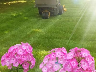 Lawn cuts (Burlington, MA)