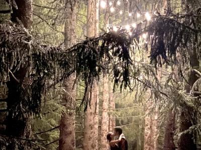 Backyard Weddings, Bistro Lighting, Tree Lighting, Canopy Lights, etc.